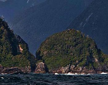 Fiordland Lobster Company
